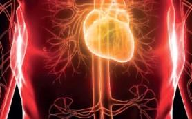 informatti_sanatate_risc-boli-cardiovasculare_editie6