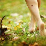 Beneficiile microelementelor nutritive în tratamentul bolii Lyme