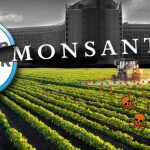 Autoritățile europene aprobă cumpărarea de către Bayer a gigantului pesticidelor, Monsanto