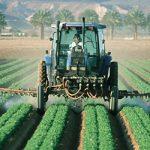 Pesticide asociate cu riscul de cancer, găsite în aproape toate alimentele din SUA
