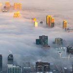 Omega 3 și poluarea aerului