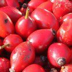 Nivelurile scăzute de vitamine şi antioxidanţi, responsabile de fragilitatea la vârstnici