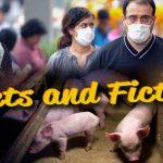Adevăr şi ficţiune despre pandemia de gripă porcină din 2009
