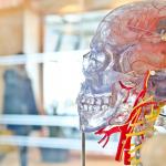 Hipertensiunea la vârsta maturităţii, asociată cu deteriorări ale creierului la bătrâneţe